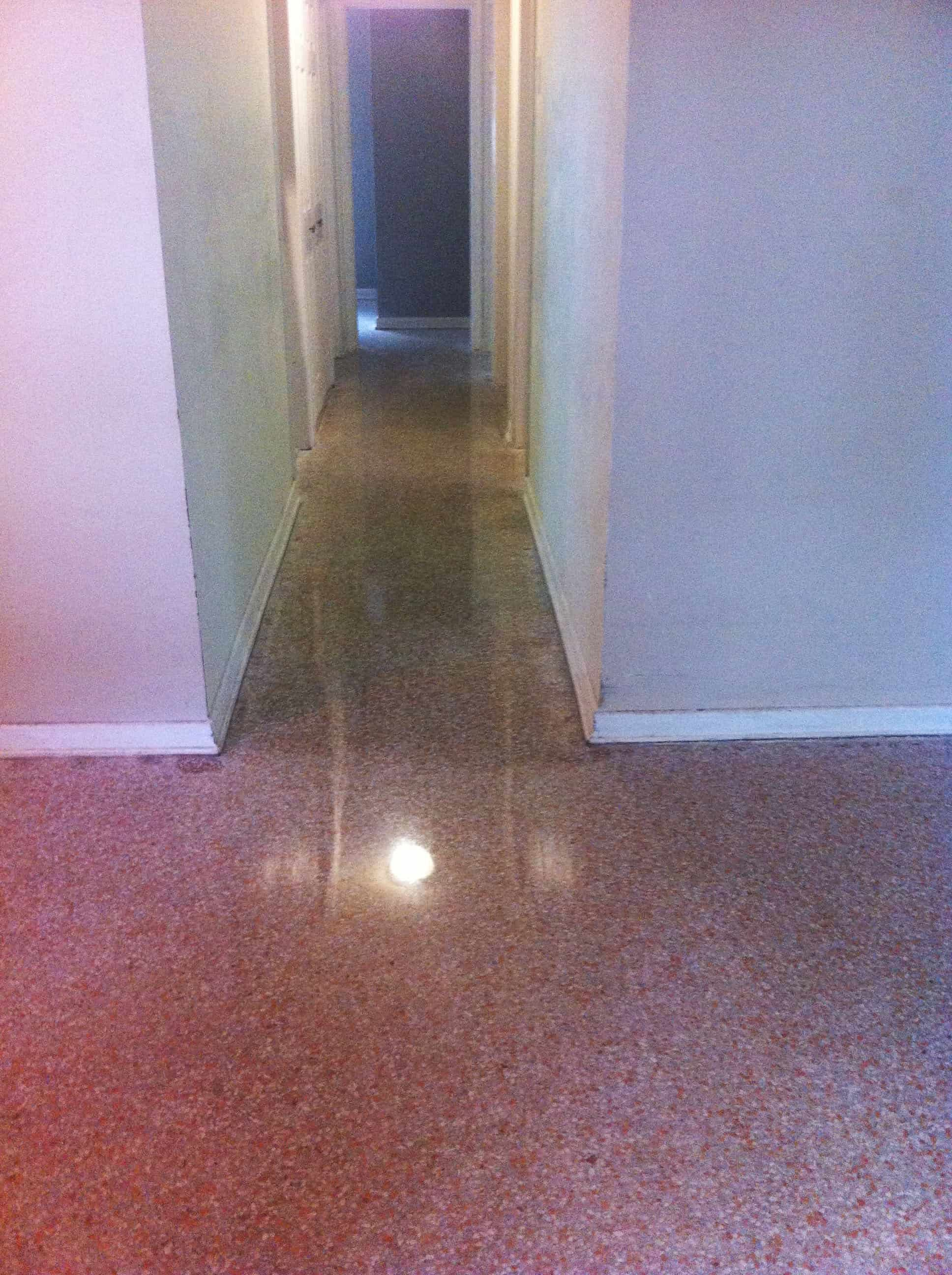 Terrazzo Restoration Gainesville done with all dry restoration