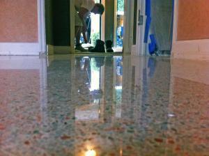 Terrazzo floor polished