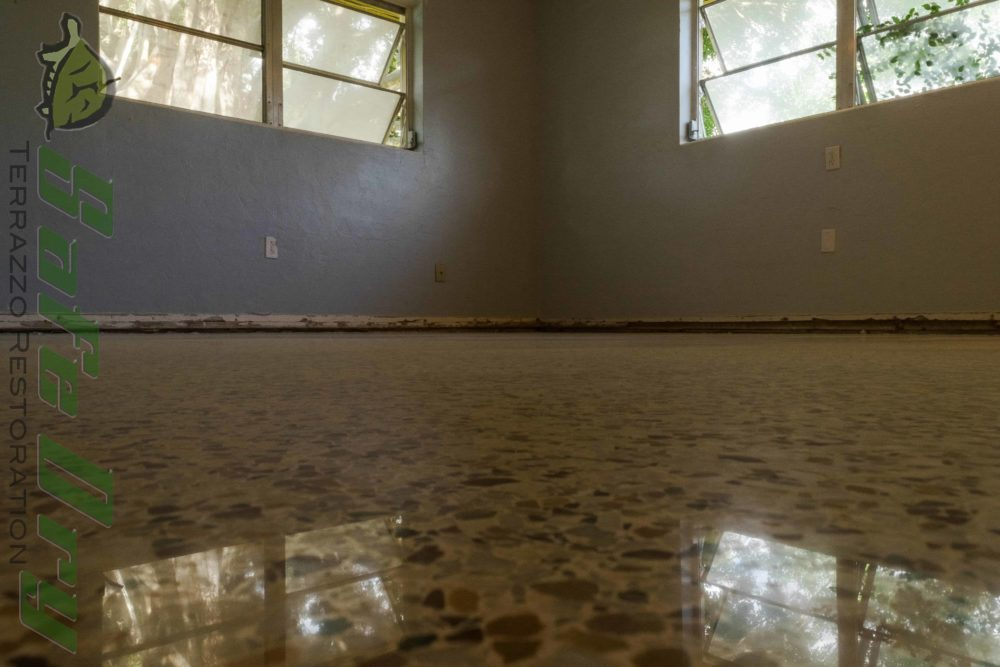 Terrazzo Dry Polished and Restored