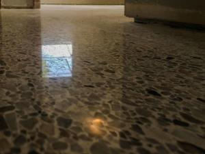 Terrazzo Floors Polished and Sealed