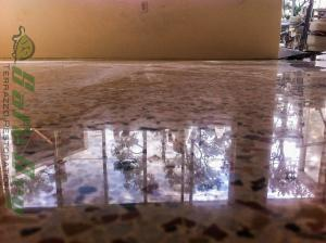 Polished terrazzo Gainesville after