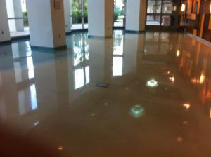 Commercial terrazzo restoration done by SafeDry