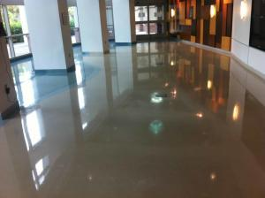 Commercial Terrazzo Restoration done by SafeDry Terrazzo Restoration