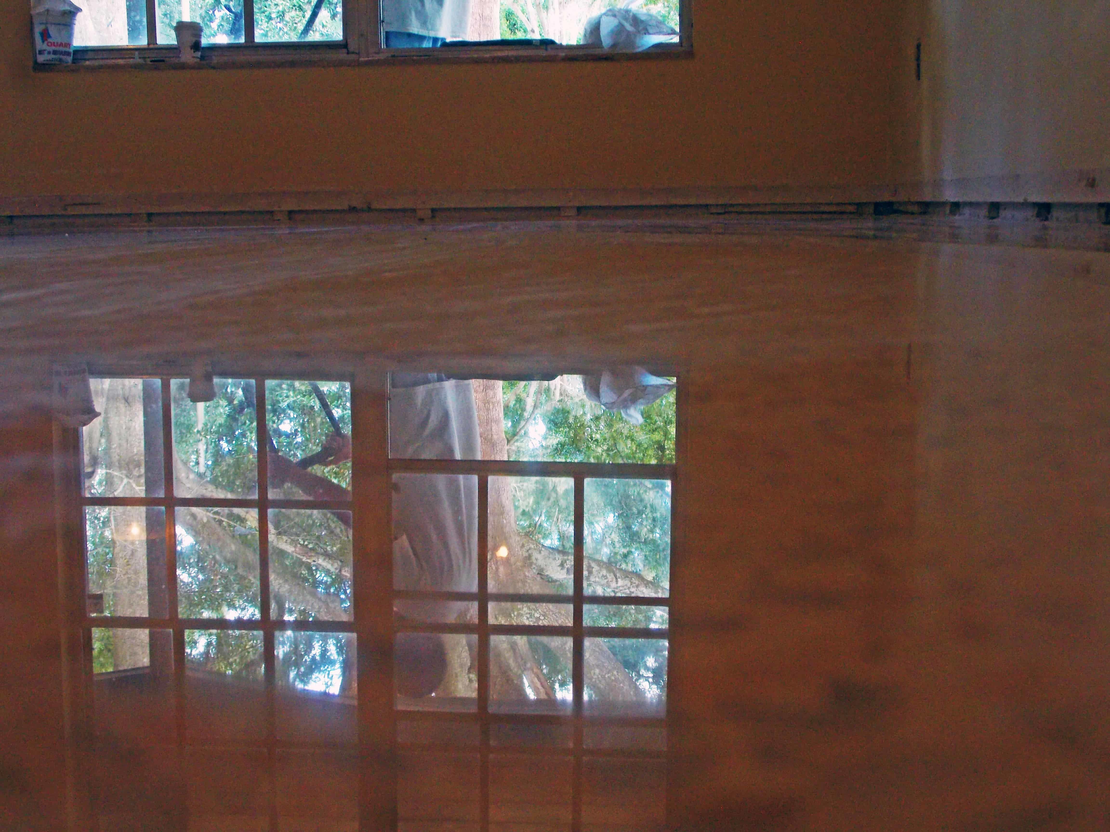 Diamond Polished Terrazzo Floor done in Tampa